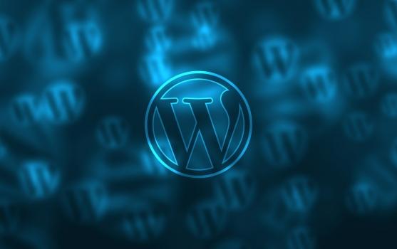 Tłumaczenie WordPress z WPML – czy jesteś na czasie? | TOMEDES translation